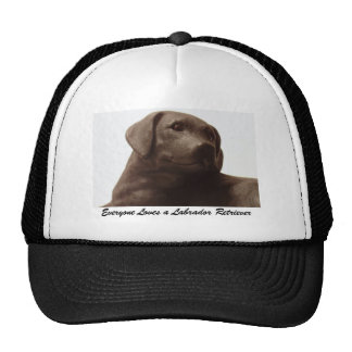 Cada uno ama a un labrador retriever gorras