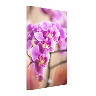 Cadena de flor de color rosa oscuro de la orquídea lienzo