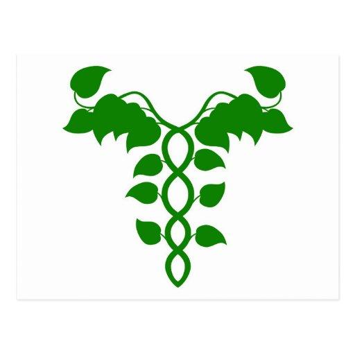 Caduceo holístico de la medicina o concepto de la  tarjetas postales