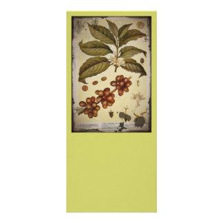 Café botánico retro de la imagen plantillas de lonas