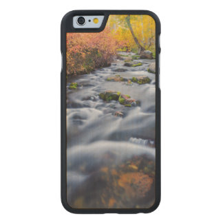 Caída a lo largo de la cala de Lundy, California Funda De iPhone 6 Carved® Slim De Arce