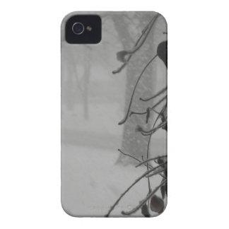 Caída del Clematis y de la nieve durante una Funda Para iPhone 4 De Case-Mate