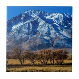 Caída del este de Sierra Nevada - obispo - Azulejo Cuadrado Pequeño