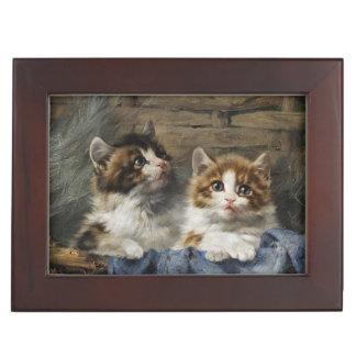 Caja clásica del recuerdo de los gatitos