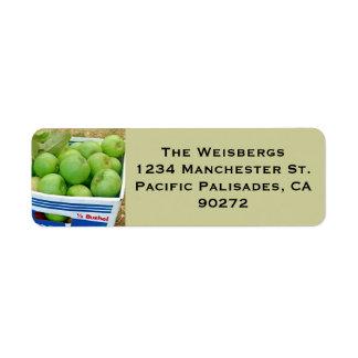 Caja de etiqueta verde de las manzanas etiqueta de remitente