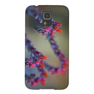 Caja de la galaxia S5 de Samsung de la flor Funda Para Galaxy S5