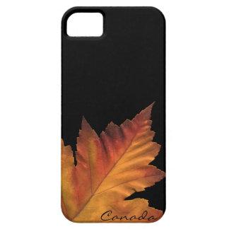 Caja de la hoja de arce del otoño de Canadá del iPhone 5 Case-Mate Cárcasas