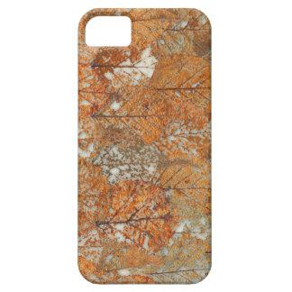Caja de oro del teléfono del otoño iPhone 5 protectores