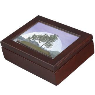Caja De Recuerdos Árbol con hojas liso de los bonsais del olmo - 3D