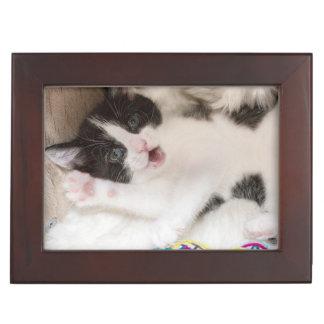 Caja De Recuerdos Gato blanco y negro