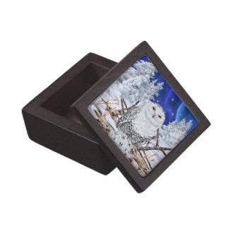 Caja De Regalo Búho Nevado en nieve