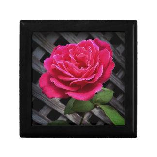 Caja De Regalo Color de rosa rosado