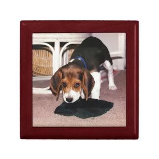 Caja de regalo con la fotografía del perrito del