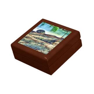 caja de regalo de la iguana del bahama