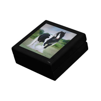 "Caja de regalo del caballo de ""Tessa"""
