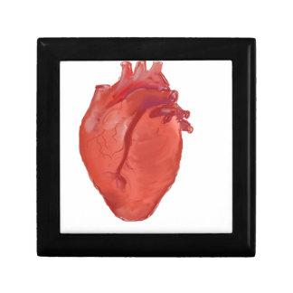 Caja De Regalo Diseño de la anatomía del corazón