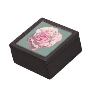 Caja De Regalo Ejemplo color de rosa rosado de la acuarela