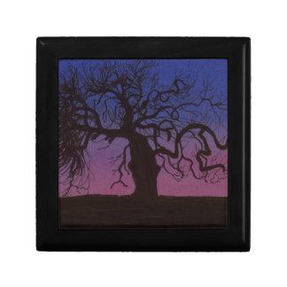 Caja De Regalo El árbol Gnarly