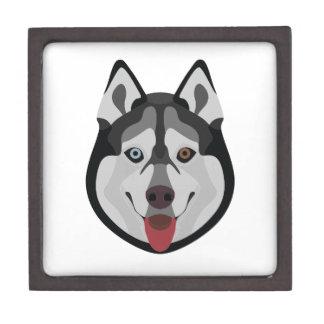 Caja De Regalo El ilustracion persigue el husky siberiano de la