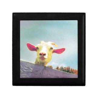 Caja De Regalo El más grande de todos cabra espigada rosada del