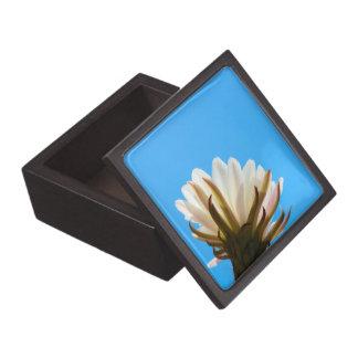 Caja De Regalo Flor del cactus