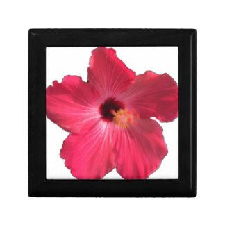Caja De Regalo Flor rosada 201711e del hibisco