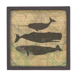 Caja De Regalo Ilustraciones antiguas del vintage de la ballena