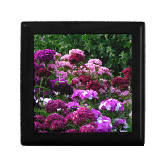 Caja De Regalo Jardín de flores en verano