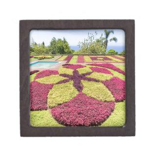 Caja De Regalo Modelos y formas coloridos hermosos en jardín