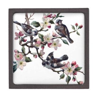Caja De Regalo Pájaros del vintage