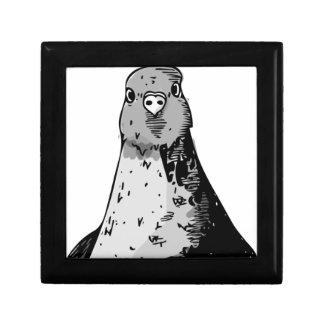 Caja De Regalo Pájaros mudos