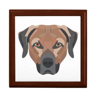 Caja De Regalo Perro Brown Labrador del ilustracion