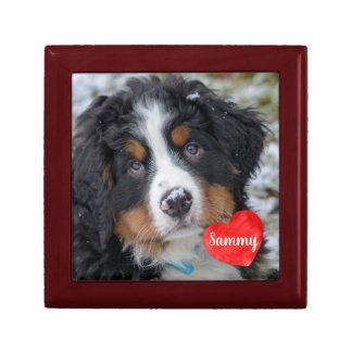 Caja De Regalo Regalos de la foto del mascota - monumento del