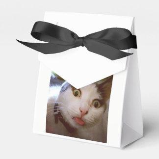 Caja del gatito Yum Yum