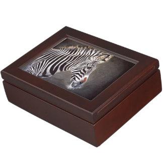 Caja del recuerdo de la cebra