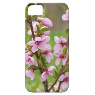 caja del teléfono de la flor de cerezo funda para iPhone SE/5/5s