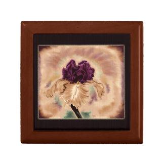 Caja del tesoro del iris del vintage