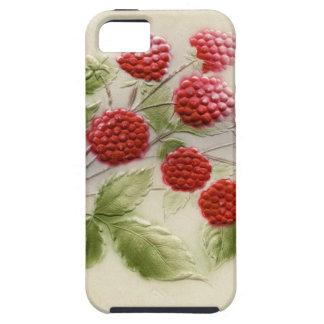 Caja dulce del teléfono de las frambuesas del funda para iPhone SE/5/5s