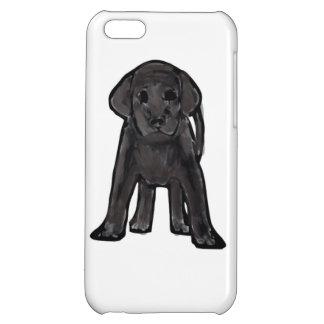 Caja negra del iPhone de Labrador