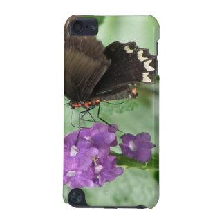 Caja negra linda de iTouch de la mariposa