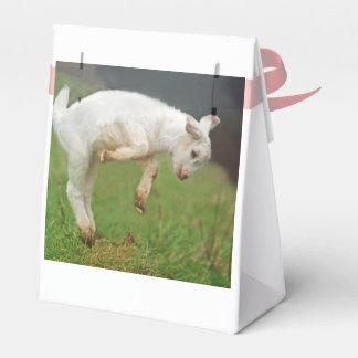 Caja Para Regalos Dos cabras blancas lindas del bebé