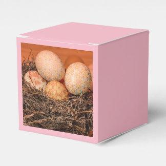 Caja Para Regalos Huevos de Pascua rústicos en jerarquía