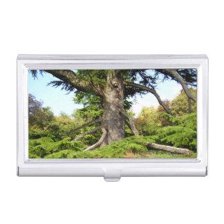 Caja Para Tarjetas De Visita Tenedor de la tarjeta de visita del árbol de