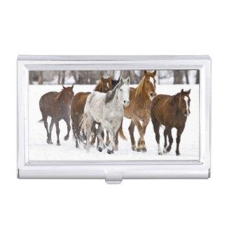 Caja Para Tarjetas De Visita Un invierno escénico de caballos corrientes en los