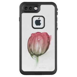 Caja roja del iPhone del tulipán