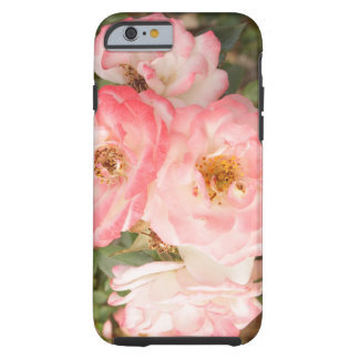 Caja subió flor rosada del teléfono del iPhone 6 Funda Resistente iPhone 6