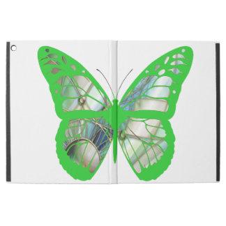 Caja verde de la mariposa del vitral de la