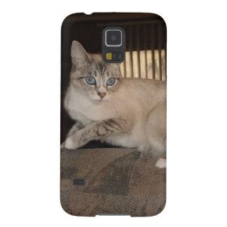 Cajas animales adorables de la galaxia de Samsung Funda Galaxy S5