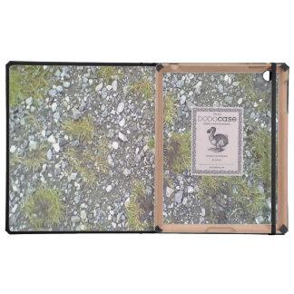 Cajas del folio del iPad de la plantilla de iPad Carcasa
