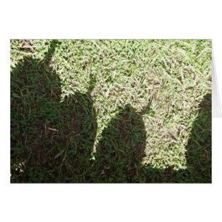 Calabazas de la sombra tarjeta pequeña